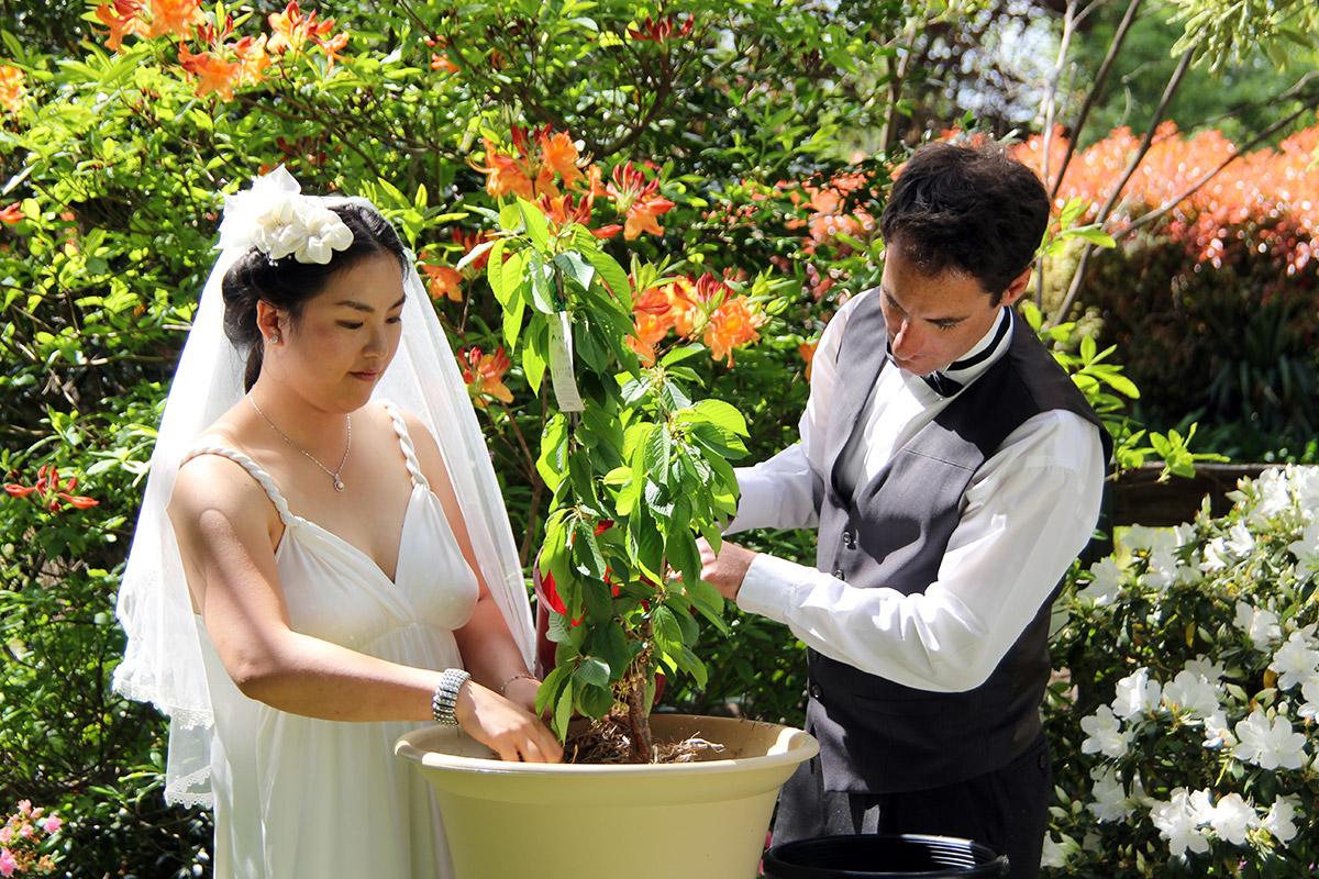 Blue Mountains Wedding Celebrant Tree Planting Ceremony