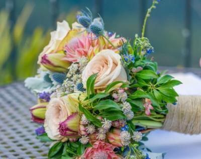 Blue Mountains Wedding Celebrant 12